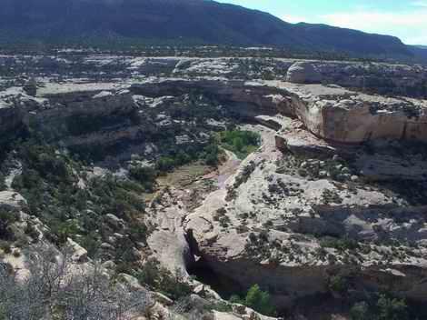 Natural Bridges Area