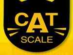 Cat Weigh Scale