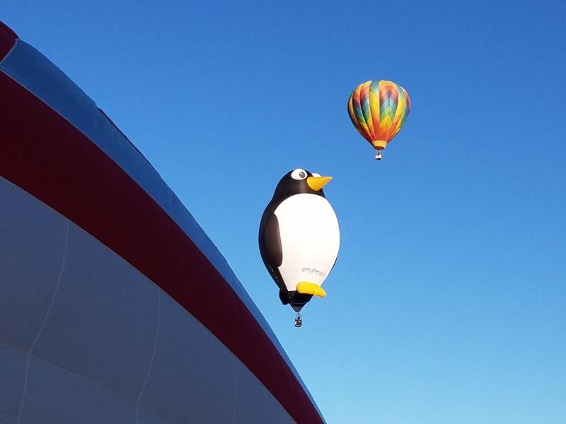 Penguin in the Sky