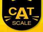Cat Weigh Scale